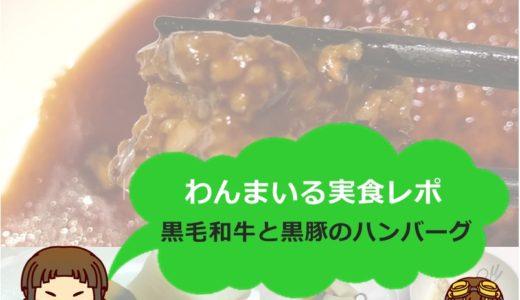 【体験談】食事宅配「わんまいる」をガチでレビュー!宮崎県産黒毛和牛と黒豚のハンバーグデミグラスソースをレポート