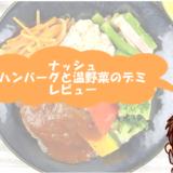 【体験談】ナッシュ(nosh)ハンバーグと温野菜のデミをレビュー!